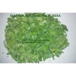 Moringa Dried Leaves Exporters India
